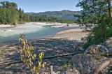 Sauk River, Western Washington