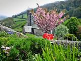 Devon: Another Church