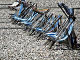 Devon: Chairs in Waiting