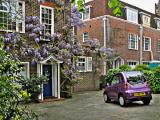 Kensington: A Purple Ride