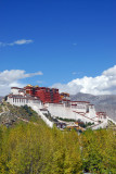 Autumn is nearing Lhasa