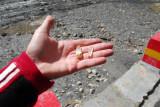 Crystals I bought from a kid at Karo-la Pass