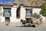 Horse-drawn cart, Pelkor Road, old town Gyantse