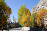 Trees changing color along the lane at the base of the western wall of Pelkor Chöde Monastery