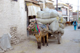 A fully loaded horse in old town Gyantse