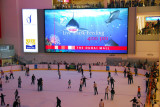 Dubai Mall ice skating rink