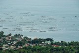 Fish farms in Lake Taal at the village of Talisay