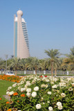 Flowers with Etisalat Tower