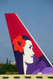 Tail of a Hawaiian Airlines B767 at HNL