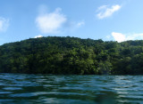 Jellyfish Lake on the island of Eil Malk in the Rock Islands of Palau