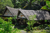 Thatched huts at Jungle River Boat Cruises, Ngchesar State, Babeldaob, Palau