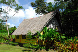 Traditional Palauan meeting house-style (Bai) at Jungle River Boat Cruises