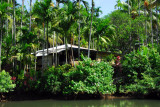 Ngerdorch River, Ngchesar State, Babeldaob, Palau