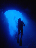 Divers in the Blue Hole, Palau
