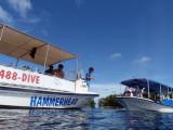 Lunch stop off Ngemelis Island, Palau
