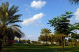 Zabeel Park competition area #190