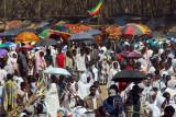 Timkat procession, Bahir Dar