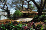 Lakeside garden of the Ghion Hotel, Bahir Dar