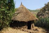 Thatched Ethiopian hut