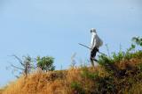 Ethiopians are often seen carrying sticks