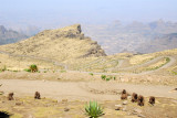 Gelada with the impressive switchbacks of the park road, Simien Mts