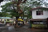 A similar leper colony had already been established at Molokai in Hawaii