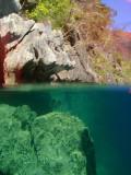 Barracuda Lake, Coron Island