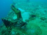 Lionfish on top of Akitsushima