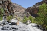 Ghul & Wadi Nakhr