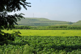 Green fields of corn, rice and other vegetables, North Hwanghae Province, DPRK
