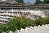 Flowers growing along a wall of the Koryo Museum, Kaesong