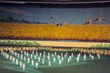 Arirang Mass Games scene 9 - traditional Korean culture