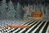 NorthKoreaAug09 1782.jpg