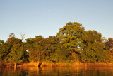 Nearly full moon, Kafue