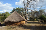McBride's Camp, Kafue National Park