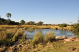 Hot spring near McBride's Camp, Kafue National Park