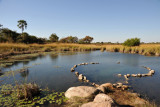 Hot Spring, Kafue National Park