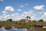 The waters of the Bangweulu are part of the upper Congo River basin