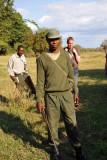 Zambian scout, South Luangwa