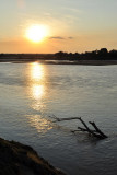 Luangwa River from the Bush Camp