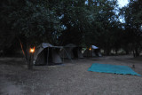 Early morning at the Bush Camp