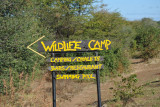 Turn here for Wildlife Camp