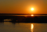Sunset, Chobe River