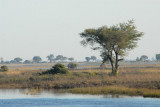 Looking across the Chobe River, Serondela Picnic Area