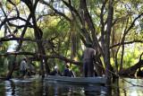 Okavango Delta - Northwest