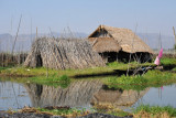 Posts used in the floating gardens of Inle Lake