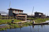 Stilt village of Kay Lar Ywa, Inle Lake