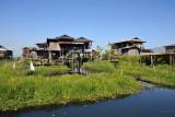 Stilt houses and floating gardens, Inle Lake