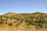 Daan Viljoen Game Park, Windhoek