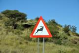 Wildlife Crossing, Trans-Kalahari Highway